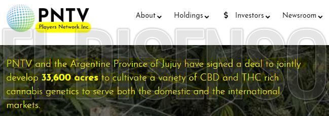 pntv_Cannabis_jujuy